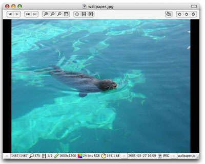 Free Image Viewer for Mac - Xee