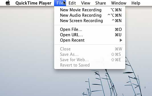 Mac Screen Recorder - Quicktime